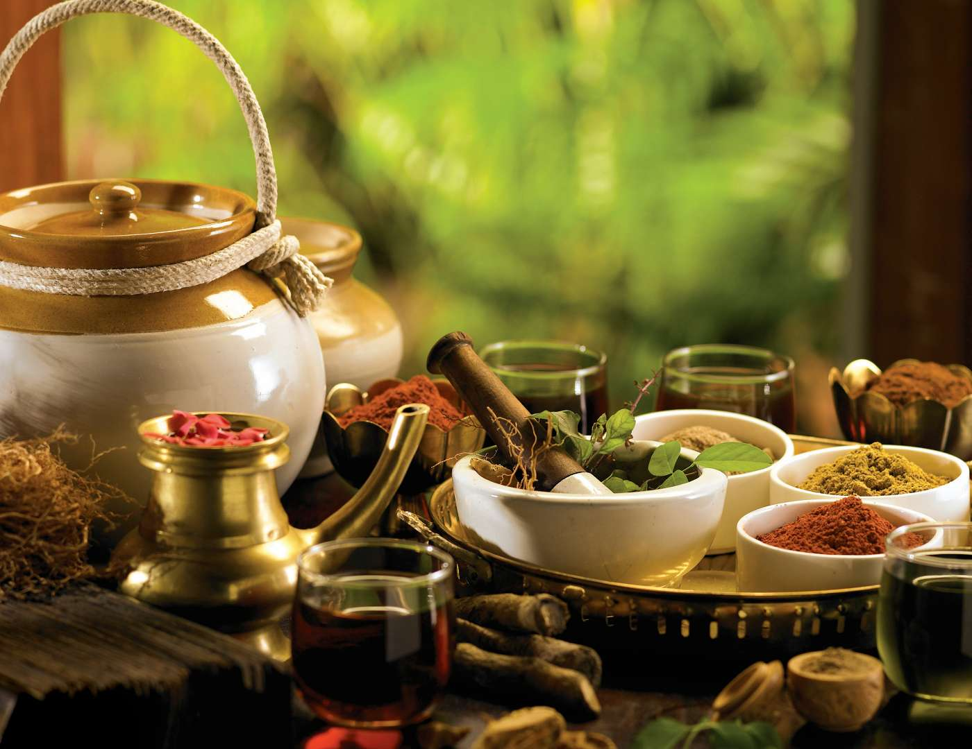 Authentic Kerala Ayurveda Tour Package